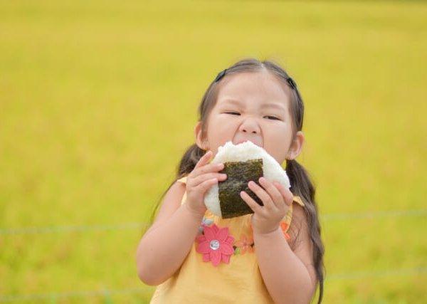 魚沼コシヒカリの新米とは何か? お米のことなら旬匠